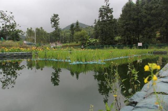 西安850个行政村已实现生活污水有效治理
