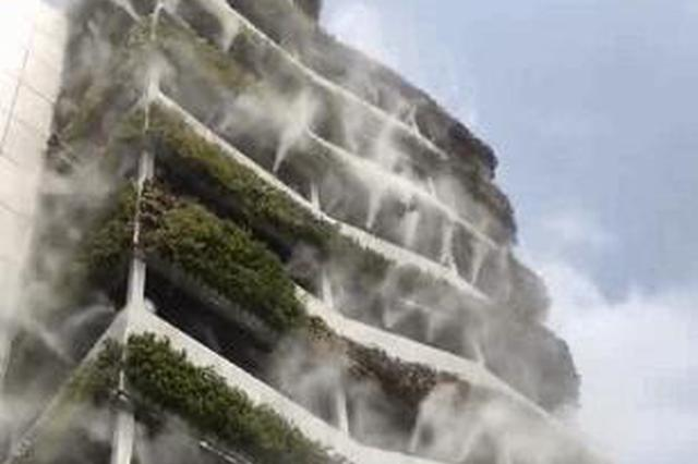 自带降温功能!西安一10层高楼成网红 垂直绿化仙气飘飘
