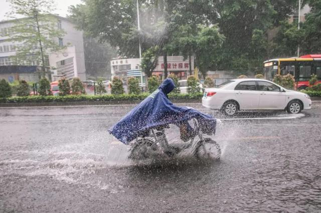 又有暴雨、大暴雨 陕西多部门联合发布重要通知