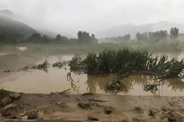 因暴雨洪涝灾害经济损失19亿 洛南灾后重建启动