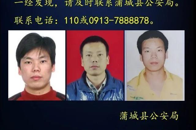 蒲城县孙镇东陈庄村重大刑事案件犯罪嫌疑人已被抓获