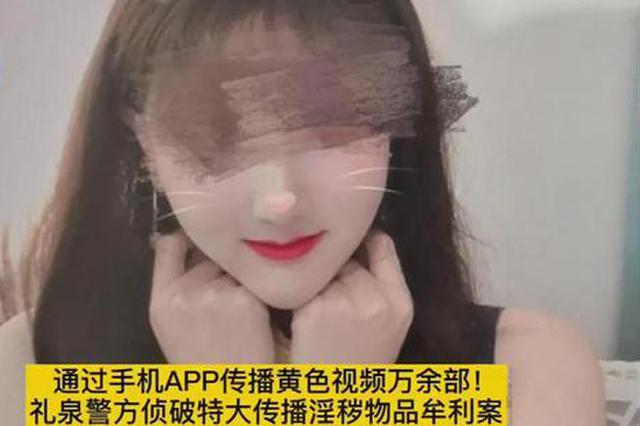 陕西警方跨17省侦破特大案 113名未成年人参与涉黄直播!