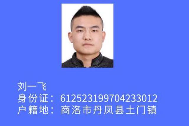 西安警方公开征集刘一飞等人违法犯罪线索