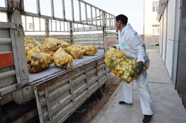 定边农业绿色发展新路子:废弃农药包装可兑换农资