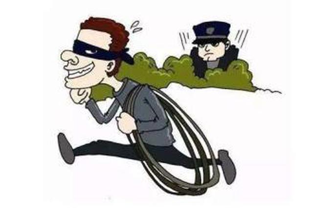 犯罪团伙疯狂盗窃电缆作案20余起 涉案价值100余万元