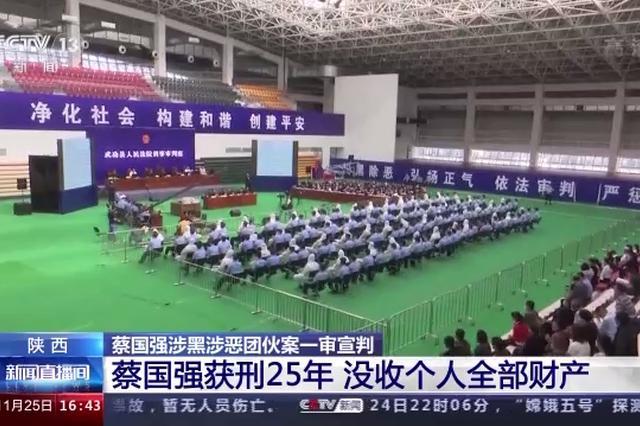 陕西蔡国强涉黑涉恶案详情披露:聚众持枪打伤民警