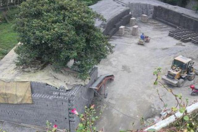 网友举报旬阳县一水泥砖厂开在社区内 已被要求停产