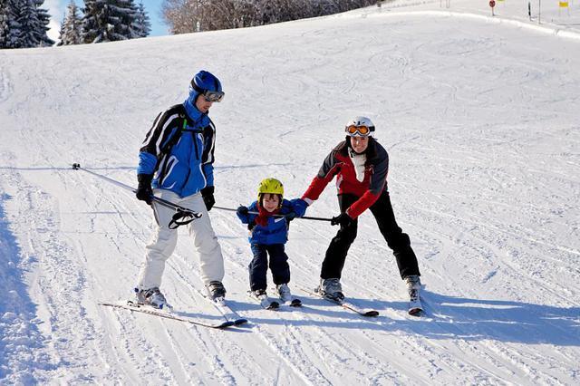 陕西多地上榜滑雪新热门目的地 景区搜索量上涨170%