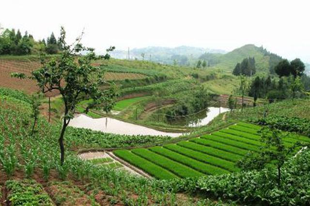 延安治沟造地土地整治工程完成 新增耕地11.77万亩