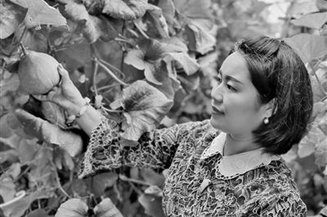 全国劳动模范刘仙会: 一把小锄头开垦蔬菜大市场