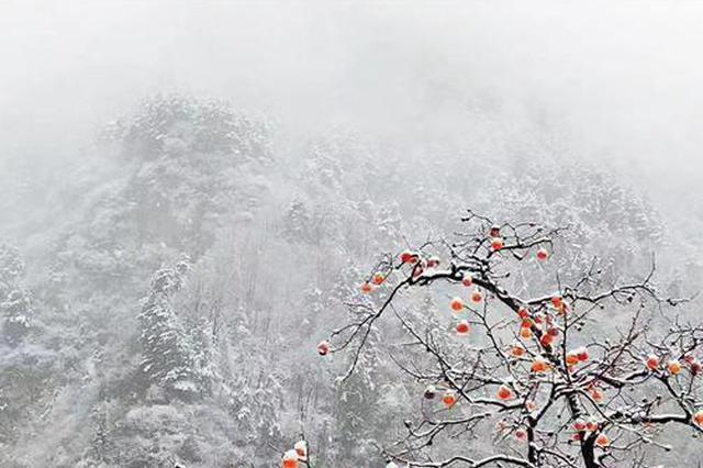 最冷跨年夜来袭!西安城区最低气温将降至零下10℃