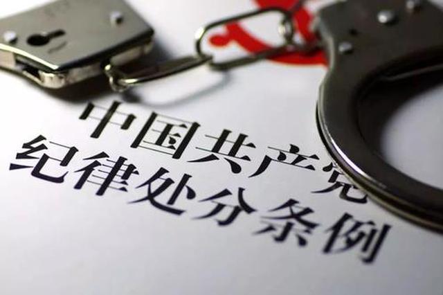 陕西咸阳市勘察测绘院原院长王煜被开除党籍