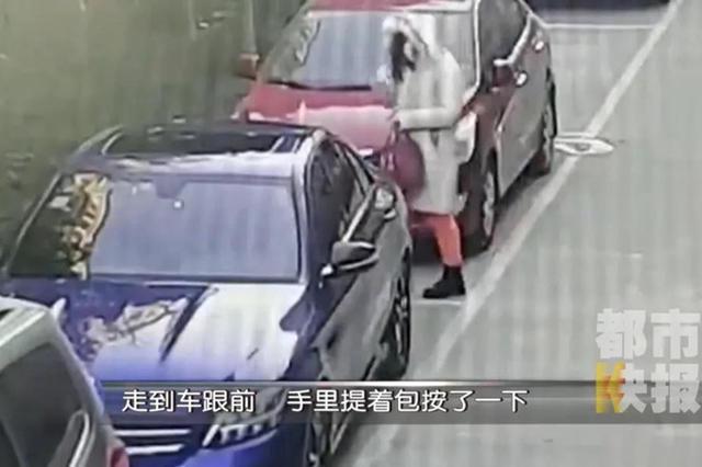 男子扮女装盗走妻子车内70多万元 竟是偿还打赏主播的欠款