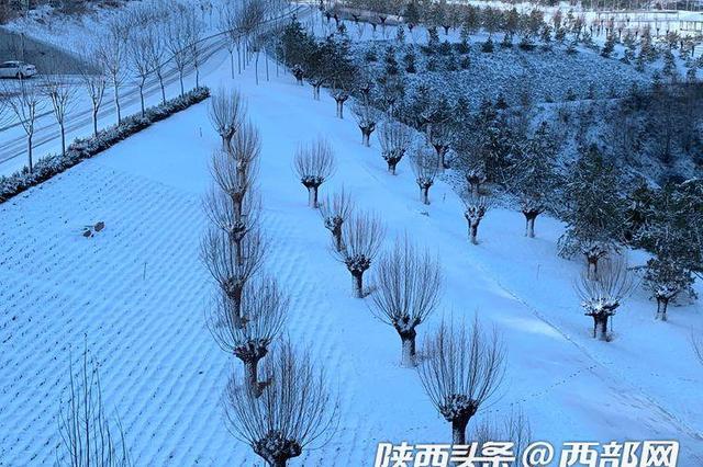 瑞雪兆丰年!榆林迎来春节后第一场雪 暴雪落在吴堡县