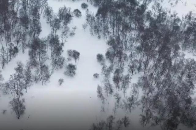寶雞關山春雪四月天 美如一幅水墨畫