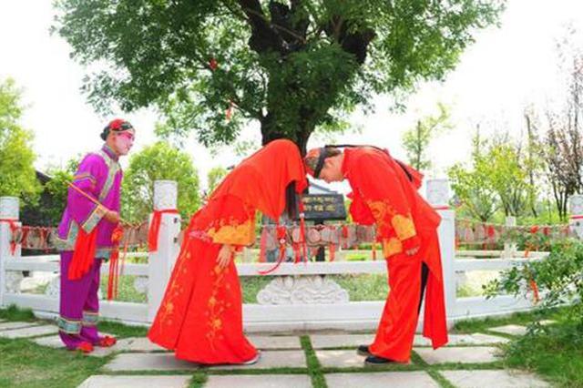 寶雞市金臺區被確認為全國婚俗改革實驗區 為期三年