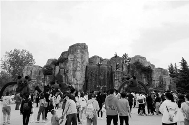"""20.86万游客""""五一""""打卡秦岭野生动物园"""