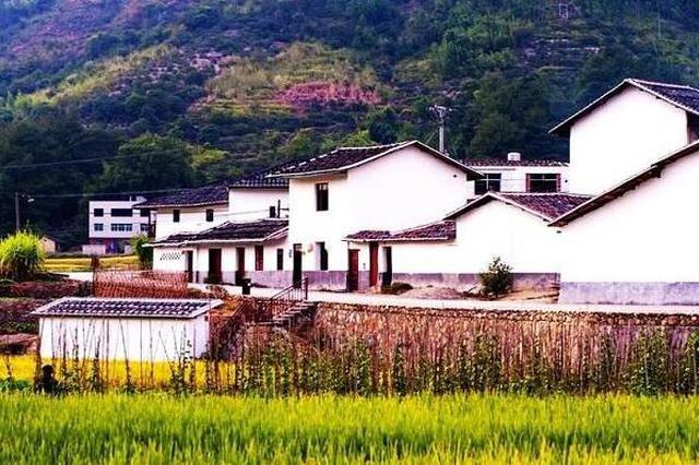 陕西省五年培育建设100个左右乡村振兴示范镇