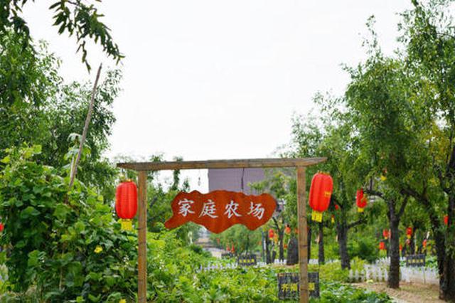 """特色农业与乡村旅游""""联姻"""" 家庭农场走出多彩致富路"""