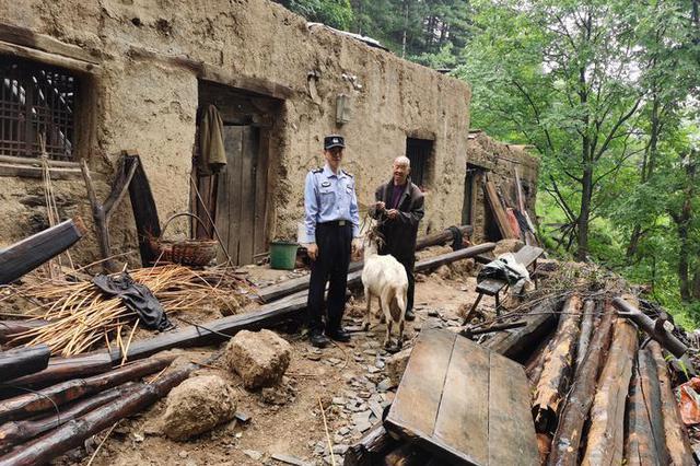 历经7天踏遍山林沟坡 民警帮群众找回8只走失羊