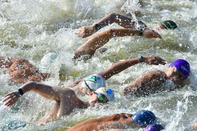 十四运会男子马拉松游泳项目开赛 37名选手一决高下