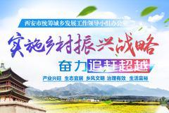西安实施乡村振兴战略:幸福新农村示范村建设