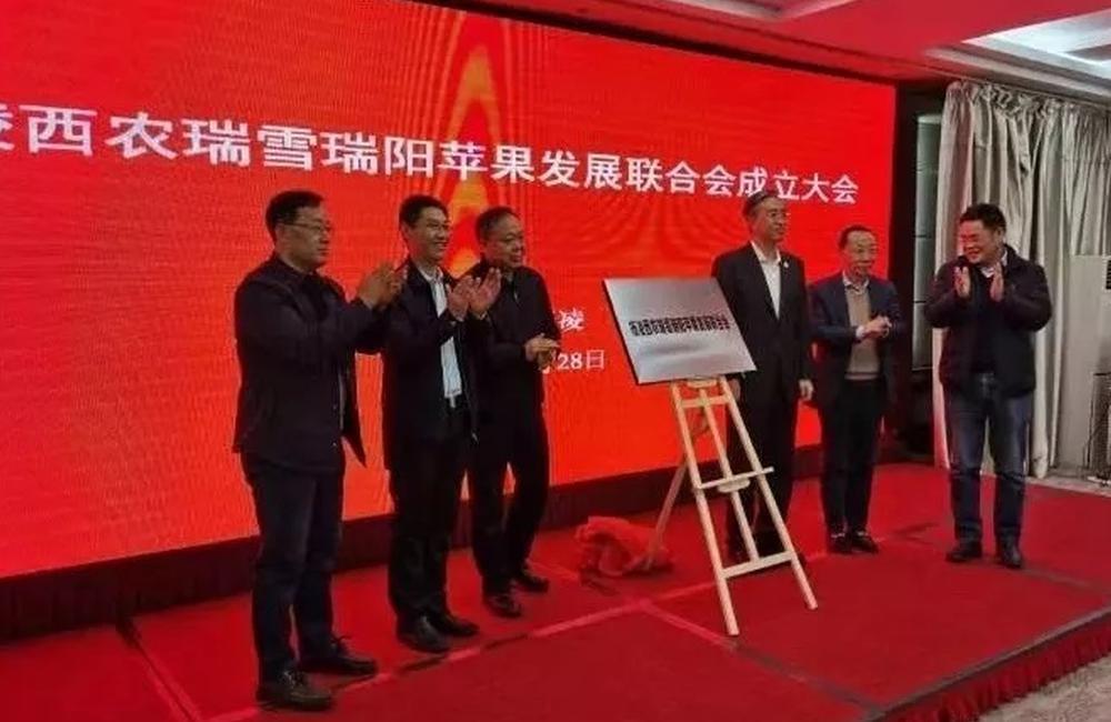 陕西省首个果业发展联会在杨凌成立