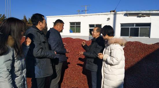 陕西府谷:第二批省级农业专家服务站成立
