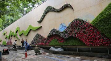 220米长花墙将完工 画花结合两相宜