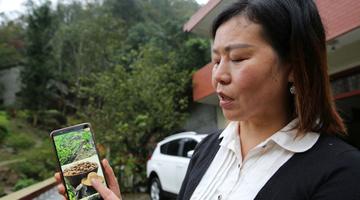 49岁农妇网上卖家乡土特产