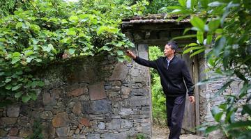 镇坪男子花30多年时间打造绿色世界