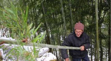 76岁老人独居深山编竹器养蜂