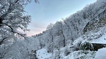 秦岭终南山春雪又冲上热搜