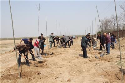 领导班子带领试验站员工植树护林