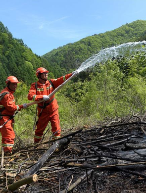 陕西举行秦岭林区森林火灾扑救演练