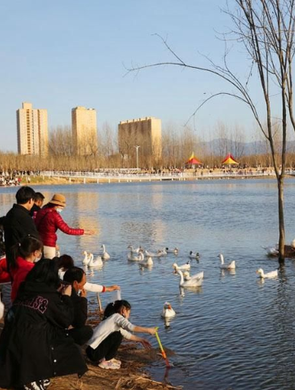 西安长安樊川公园春节假期爆满