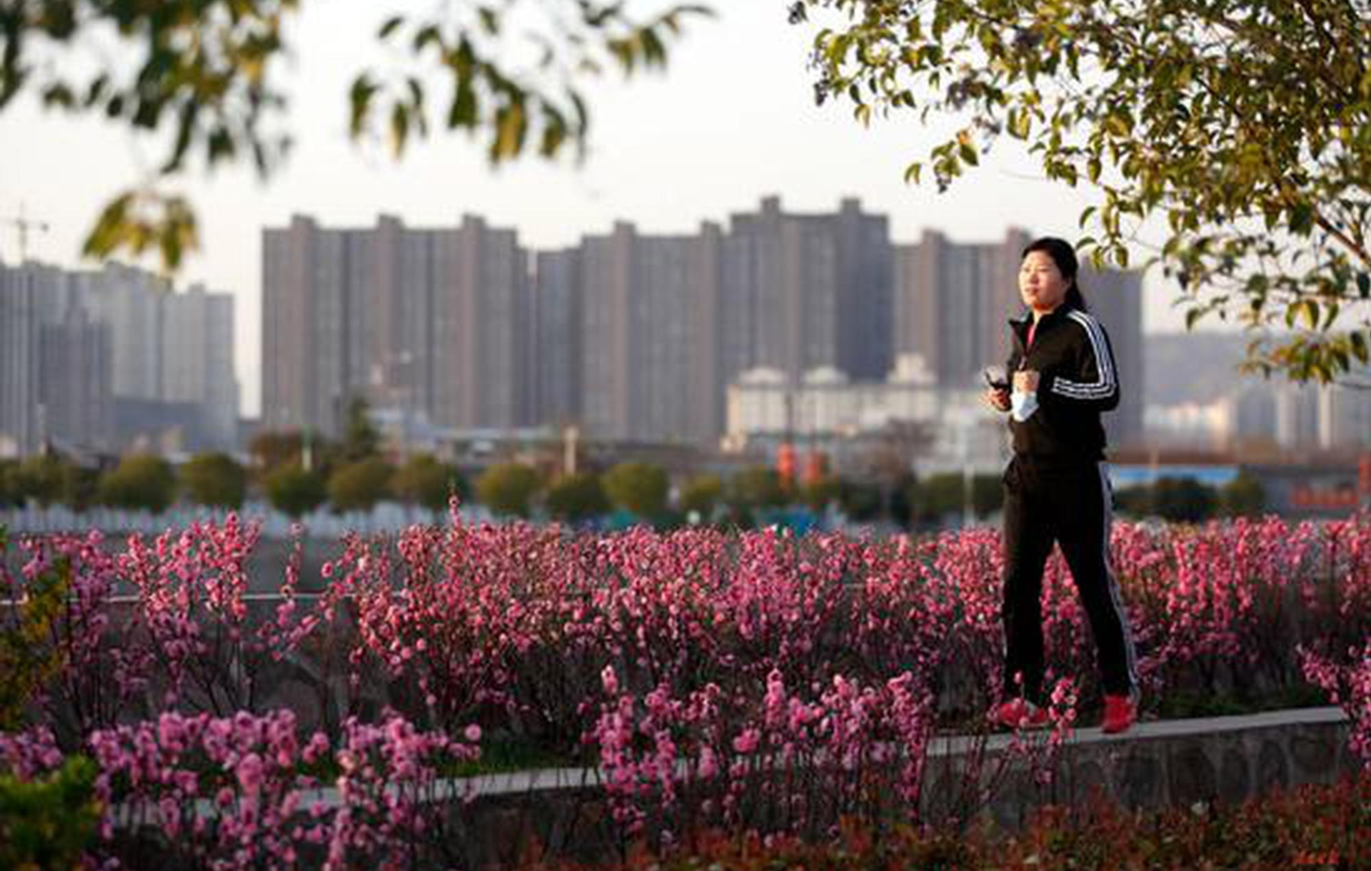 渭南:春分时节春意浓