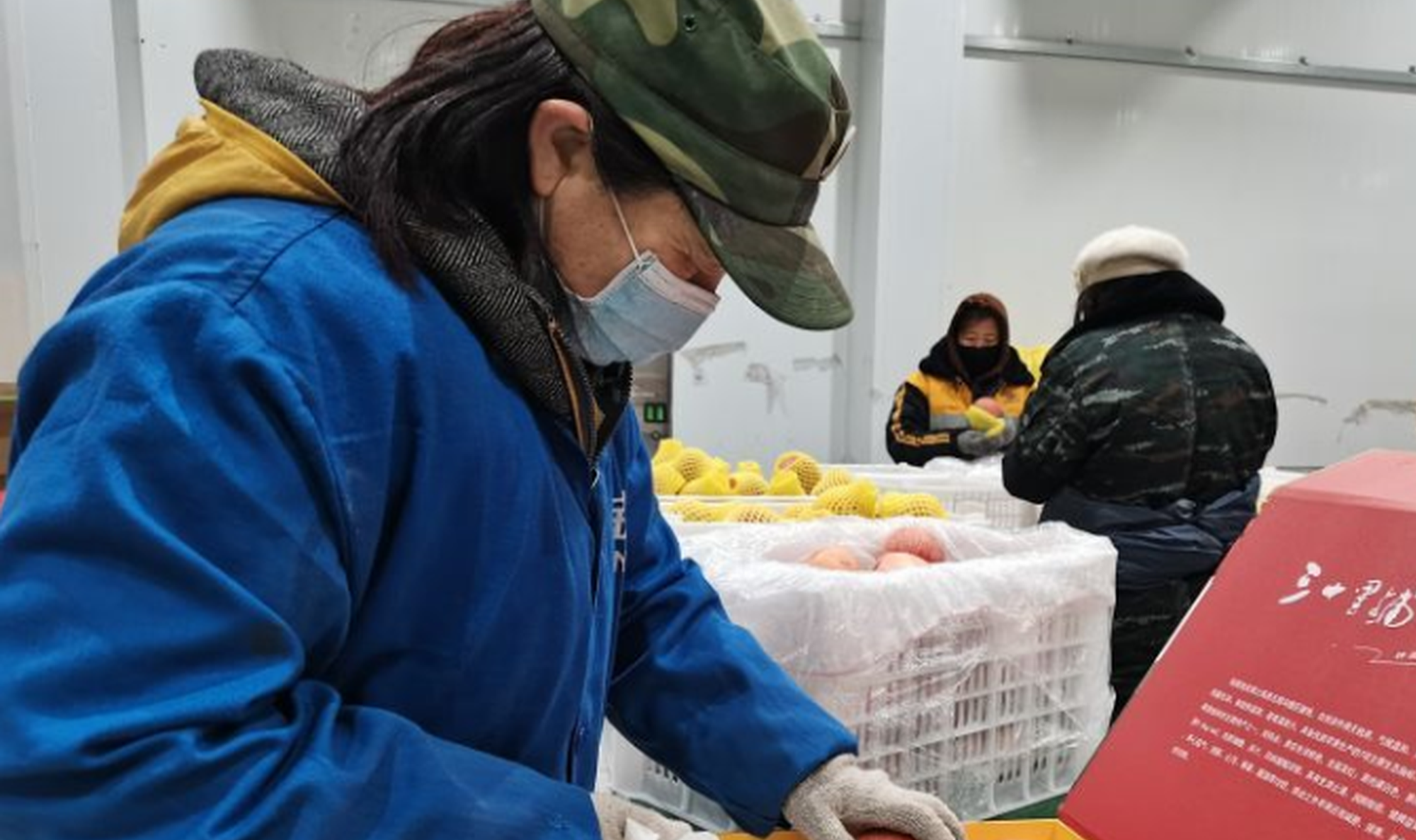 榆林市最大的冷冻保鲜库正式运行