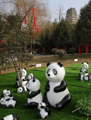 """一群""""大熊猫""""入驻小雁塔"""