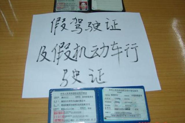 春节为省高速过路费 男子网上买假证八座车变七座