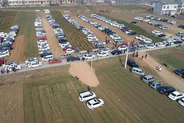 陕西村民设麦田为停车场遭质疑 官方:你没在农村待过