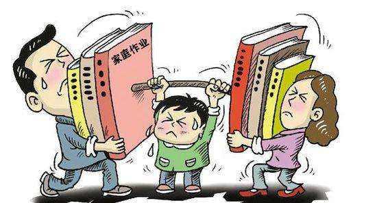 方红卫带队调研汉中市教育工作