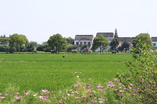 南河港村景