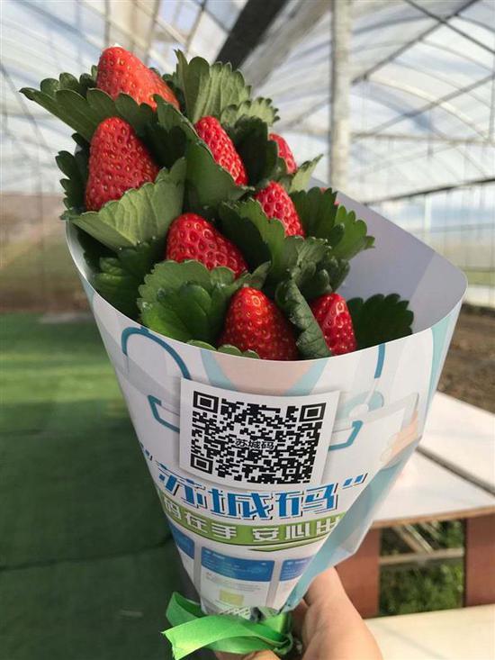 """印上苏城码的""""草莓花"""""""