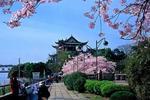 央行:加强首付款审查 关注南京苏州房价上涨风险
