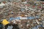 上海垃圾倾倒太湖西山案昨日开庭