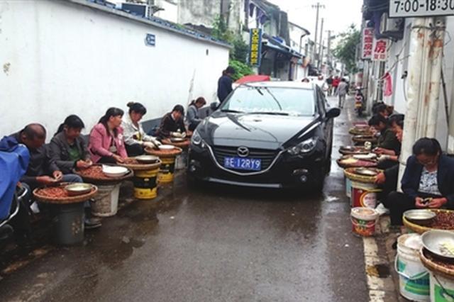 长假鸡头米热销 东大街的居民进出不便 城管、环卫也更忙
