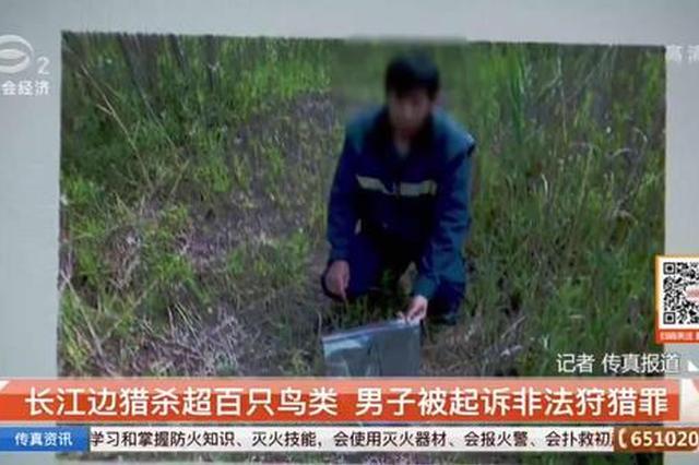 男子非法捕杀野生鸟超百只 自称为了一饱口福