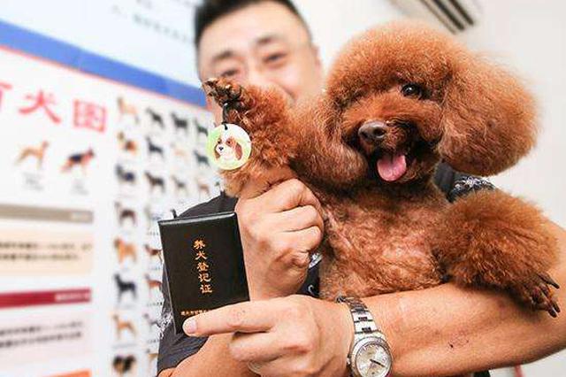 时隔11年苏州修订条例从严管理养犬