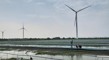 苏州渔业生态建设成效显著